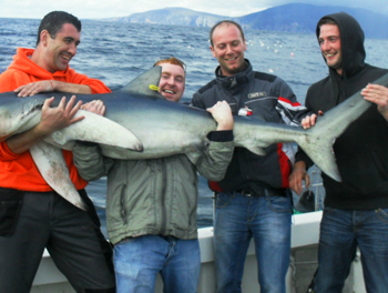 Men holding giant tunafish they have just caught