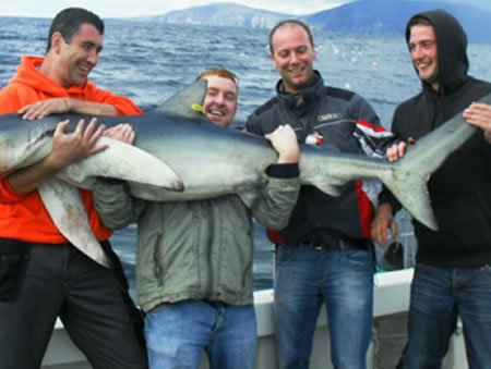 Men holding giant bluefin tuna on stag deep sea fishing package
